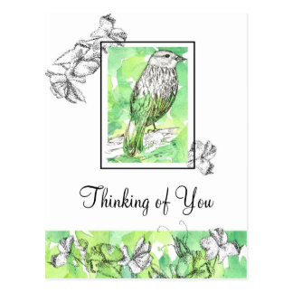 Thinking of You Bird Drawing Sweet Pea Flowers Postcard