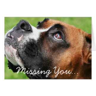 Thinking of You Boxer - Vindy Card