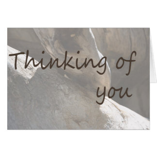 Thinking of you stationery note card