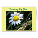 Thinking Of You...Card