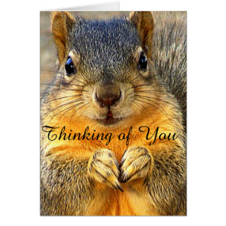 Thinking of You_ Greeting Cards