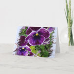 "Thinking of You Card<br><div class=""desc"">Deep Purple Pansies</div>"