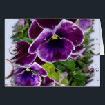 """Thinking of You Card<br><div class=""""desc"""">Deep Purple Pansies</div>"""