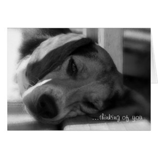 ...thinking of you card-Beagle dog Snoopy greeting Card