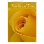 Thinking of you Card - Yellow Rose Flower