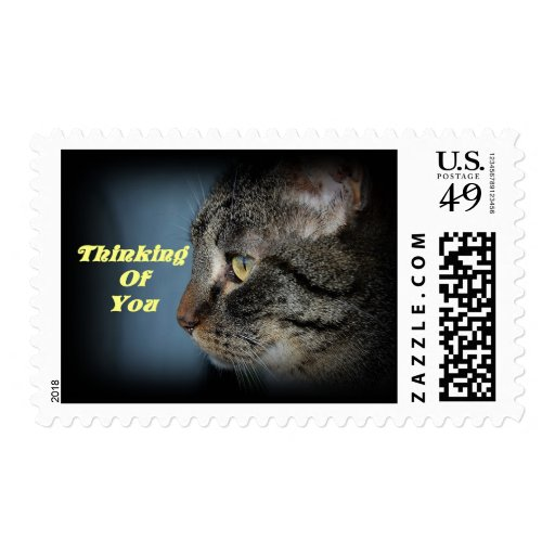 Thinking Of You Cat Postage