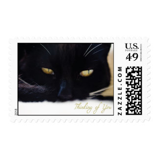 Thinking of You Cat Stamp