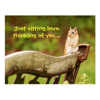Thinking of you chipmunk postcard