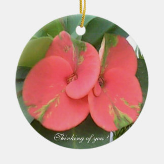 Thinking of you ! Circle Ornament