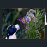 """Thinking of You Customizable Cute Puppy Card<br><div class=""""desc"""">The cutest little thinking about your card,  this has a darling puppy looking at a beautiful monarch butterfly.  A great way to send caring thoughts.</div>"""