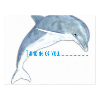 Thinking Of You Dolphin Fashion Postcard