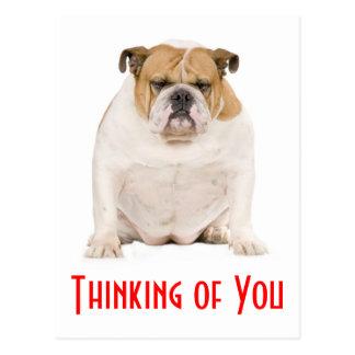 Thinking of You English Bulldog Puppy Dog Postcard