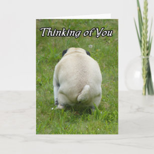 Funny Thinking Of You Cards Zazzle