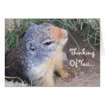 Thinking Of You Groundhog Card