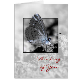 Thinking of You Holly Blue Butterfly Greeting Card