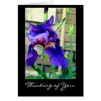 Thinking of You (Iris) Card