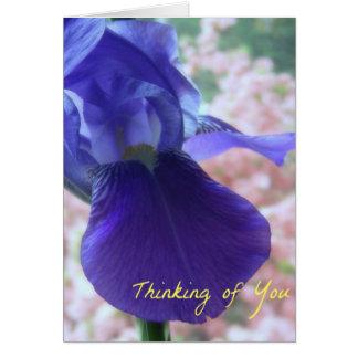 Thinking of You  ..Iris Card