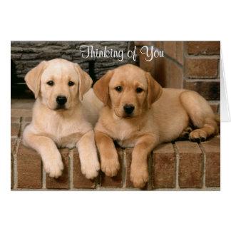 Thinking of You Labrador Retriever Puppies Card