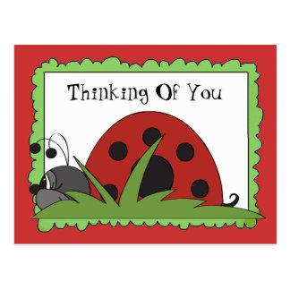 Thinking Of You Ladybug postcard