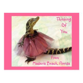 Thinking Of You, Maderia Beach, Florida Postcard