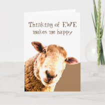 Thinking of You Makes me Smile Funny ANYONE Sheep Card