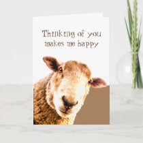 Thinking of You Makes me Smile Funny Friend Sheep Card