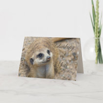 Thinking Of You Meerkat Card