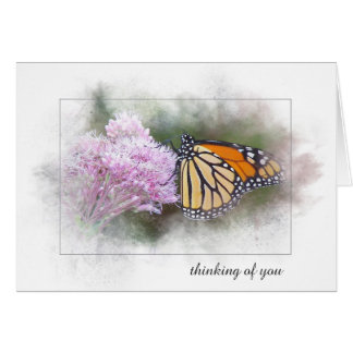 thinking of you monarch butterfly on wildflower card