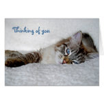 Thinking of you notecard (blank) greeting card