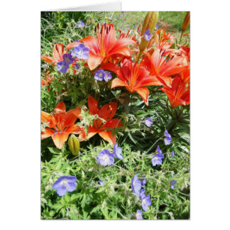 Thinking of You, Orange Lillies Card