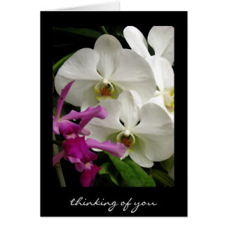 Thinking of You ~ Orchids ~Floral Art Note Card Card