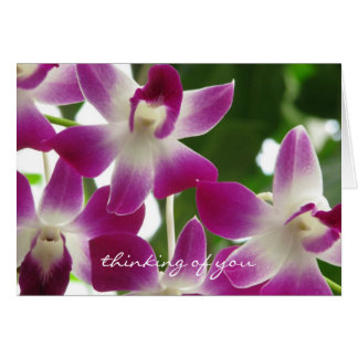 Thinking of You ~ Orchids ~Get Well Soon Card