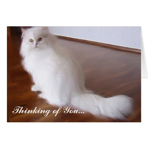 Thinking of  You Persian Cat Greeting card