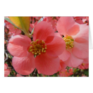 """Thinking of """"YOU"""", Pink Floral Card"""