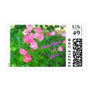 Thinking of You pink flowers Stamp