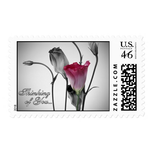 Thinking of You - Pink Rose Postage Stamp