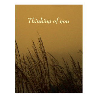 Thinking of you postcard