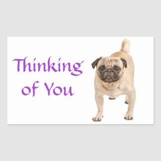 Thinking of You Pug Puppy Dog Greeting Stickers