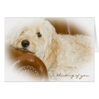 Thinking of You - Puppy Love Greeting Card