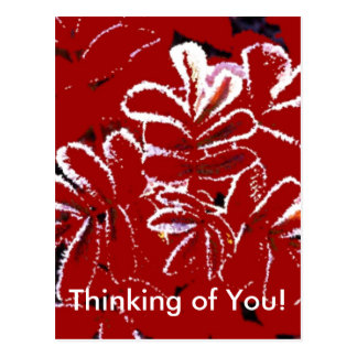 Thinking of You ~ Red Leaves in Winter Postcard