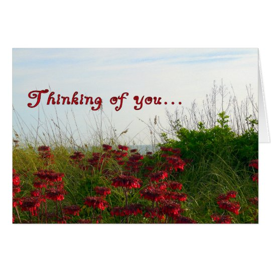 Thinking of You-Red Wildflowers by Sea Card