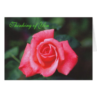Thinking of You Rose Card
