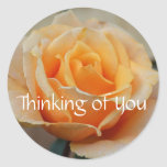 Thinking of you, rose in peach classic round sticker