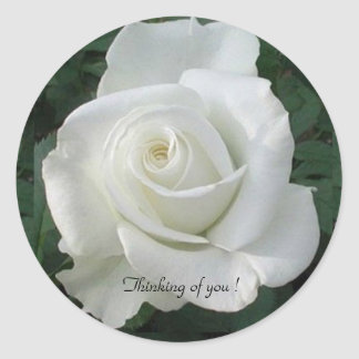 Thinking of You !  Rose,  Round Sticker