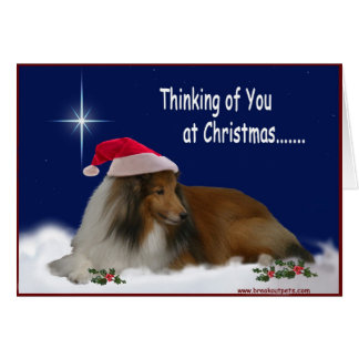 Thinking of You Sheltie Notecards Card