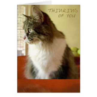 Thinking of You, Siberian Style (blank note card) Card