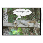 Thinking of you- Squirrel Card