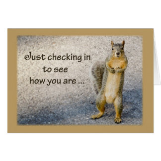 Thinking of You, Squirrel Card