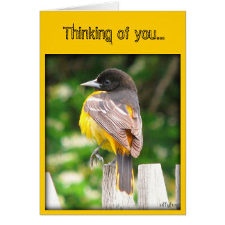 Thinking of you... stationery note card