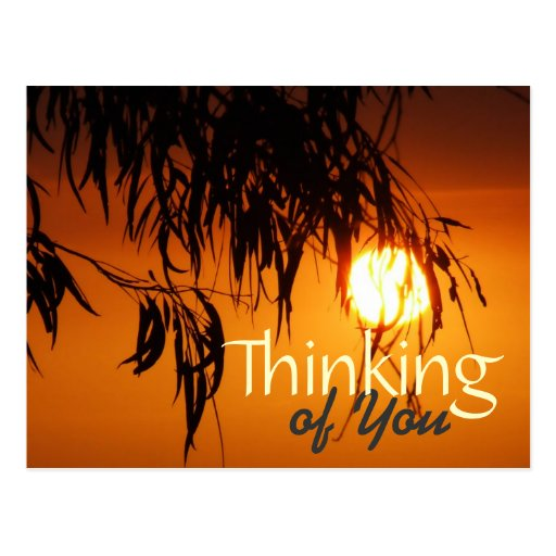 Thinking of You Sunset Glory Postcard template